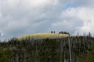 Berg Lusen Nationalpark Bayerischer Wald