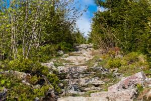 Himmelsleiter Bayerischer Wald