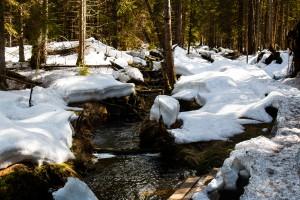 Waldhüttenbach Nationalpark Bayerischer Wald