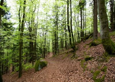Wandern zum Wackelstein