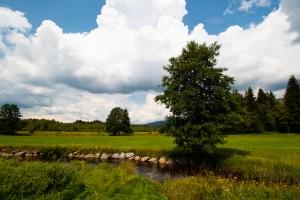 Klosterfilz Wandern Bayerischer Wald