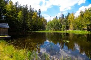 Knottenbachklause Wandern Bayerischer Wald