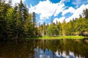 Knottenbachklause Nationalpark Bayerischer Wald