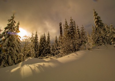 Winter im Nationalpark Bayerischer Wald