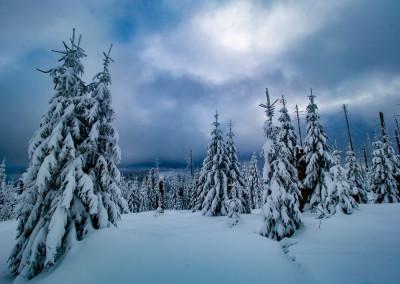 Winterlandschaft Nationalpark Bayerischer Wald