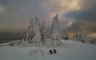 Der Finsterauer Lusensteig im Winter
