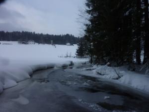 Schneeschuh Wanderung Bayerwald