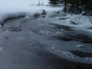 Der Saussbach in Mauth Finsterau im Winter