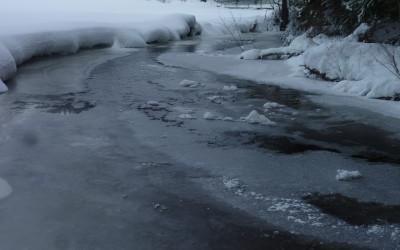 Kleine Schneeschuh Wanderung am Saussbach