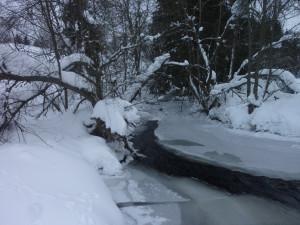 Der Saussbach im Winter