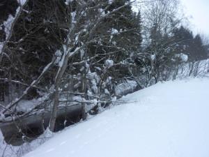 Am Saussbach im Winter