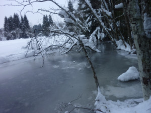 Saussbach Bayern Mauth im Winter