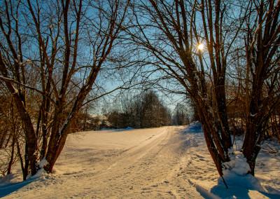 Winterwanderung im Bayerischen Wald