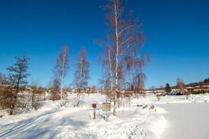 Winter in Neuschönau