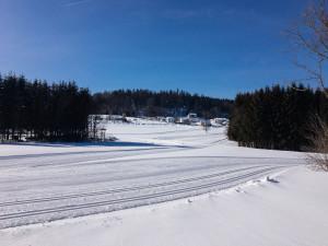Winterwandern in Klingenbrunn