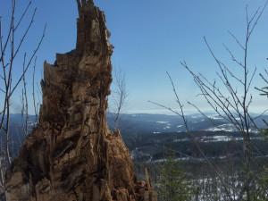 Ausblick Winter Siebensteinkopf
