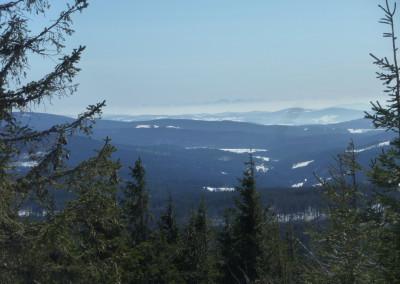 Ausblick vom Siebensteinkopf im Bayerischen Wald