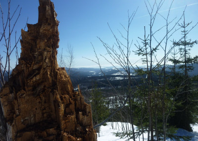 Winterwanderung auf den Siebsteinkopf