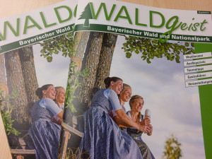 Beiträge im Magazin Waldgeist
