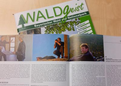 Bayerwald Wanderer im Waldgeist