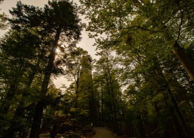 Aussichtsturm Bayerischer Wald Brotjacklriegel