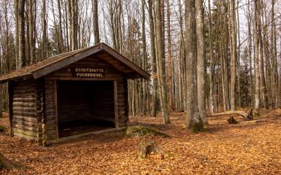 Zum Fuchsriegel im Nationalpark
