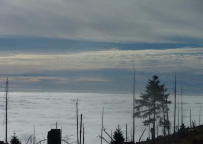 Nebelmeer Dreisessel