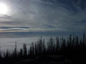 Nebelstimmung Dreisessel