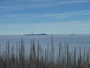 Nebel auf dem Dreisessel